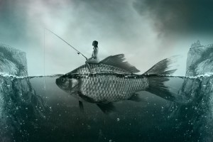 fish-1372923_1920