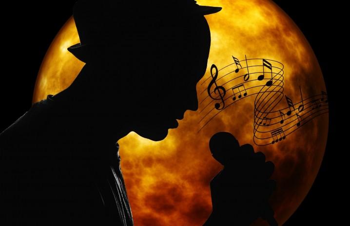 musician-2055803_1920