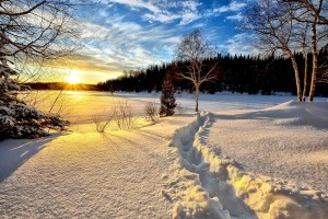winter-landscape-636634_1280